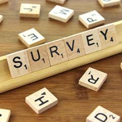 Survey scrabble